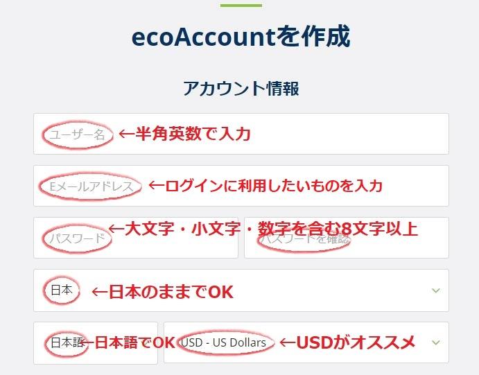 ecoPayz(エコペイズ)のアカウント情報の入力例