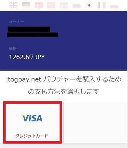 再度支払い方法にVISAを選択(バンドルカード)