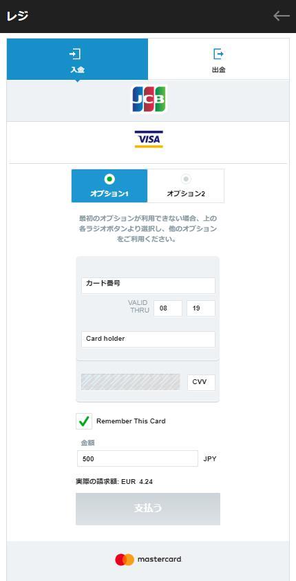 VISA入金のオプション1を選択(バンドルカードだから)