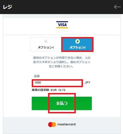 VISA入金のオプション2を選択(バンドルカードだから)