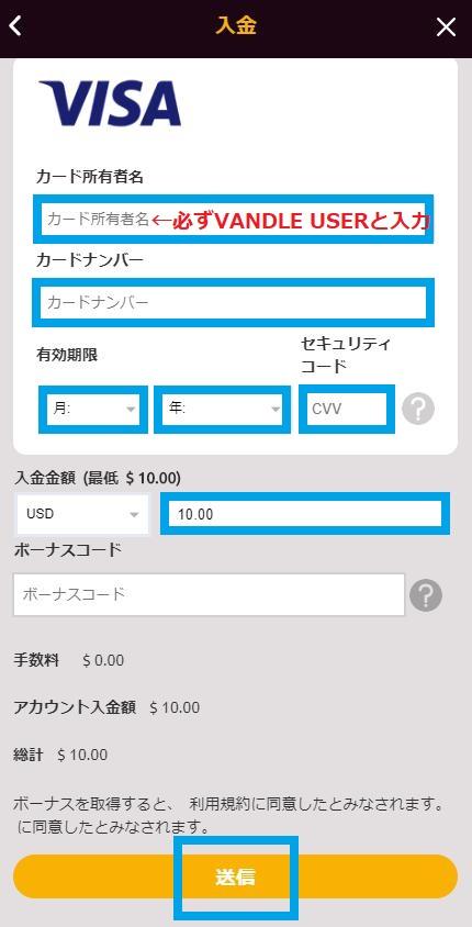 バンドルカード情報と入金額を入力