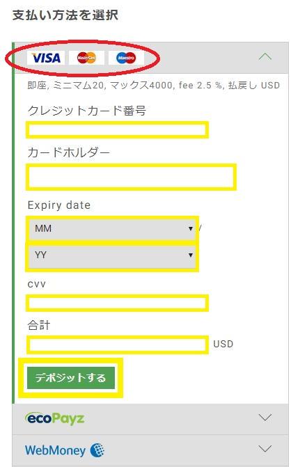 入金方法にVISAを選択しバンドルカード情報を入力(bitstarz(ビットスターズ))