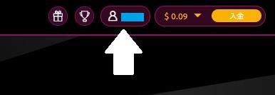 ラッキーニッキーカジノの自身のアカウントをクリック