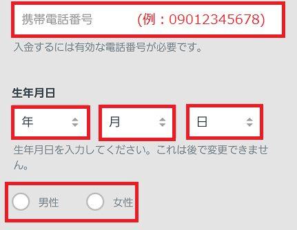 QUEEN CASINO(クイーンカジノ)に登録する携帯番号などを入力
