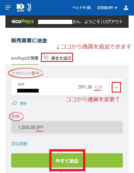 ecoPayz(エコペイズ)から10BETへの送金内容画面