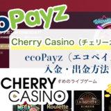 Cherry Casino(チェリーカジノ)のecoPayz(エコペイズ)入金・出金方法
