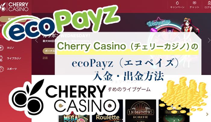エコペイズ エコペイズ(ecoPayz)の入金方法 クレジットカードは使えない?