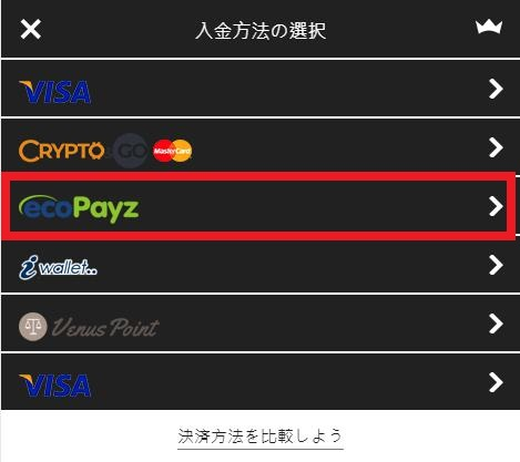 インターカジノの入金方法の中からecoPayz(エコペイズ)を選択