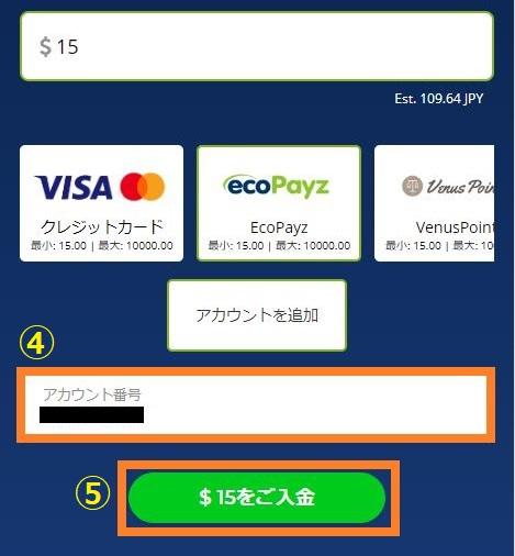 ecoPayz(エコペイズ)のアカウント番号を入力