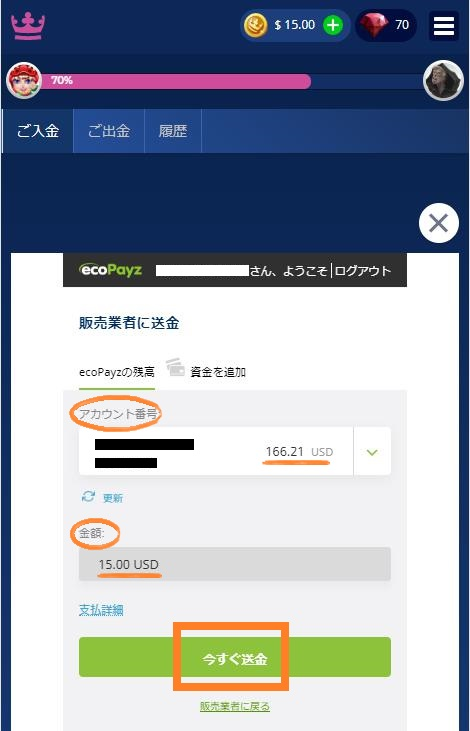 ecoPayz(エコペイズ)からカジ旅への送金内容画面