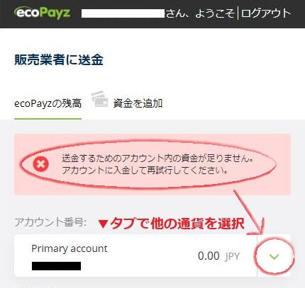 ecoPayz(エコペイズ)の残高不足のエラー表示