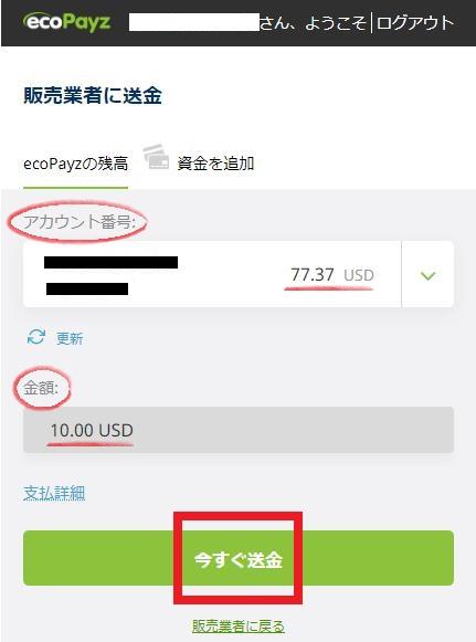 ecoPayz(エコペイズ)の入金内容を確認