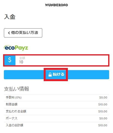 ecoPayz(エコペイズ)からの入金額を入力
