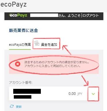 ecoPayz(エコペイズ)の残高不足エラー