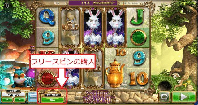 White Rabbit(ホワイト・ラビット)のフリースピン3