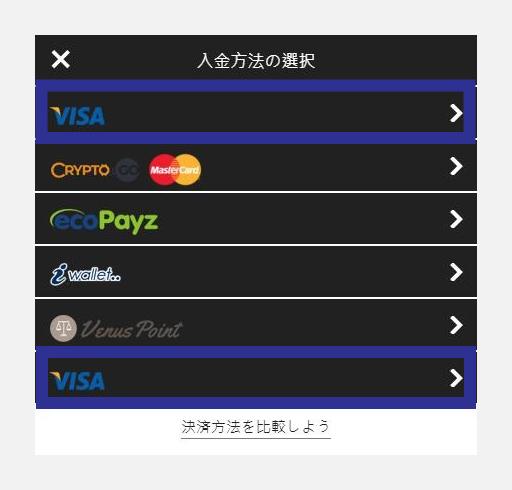インターカジノでVISA入金方法を選択